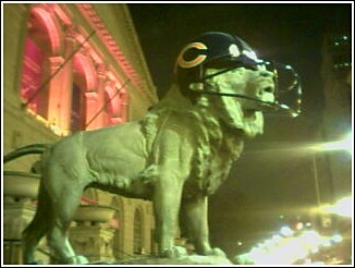 Bears_lion